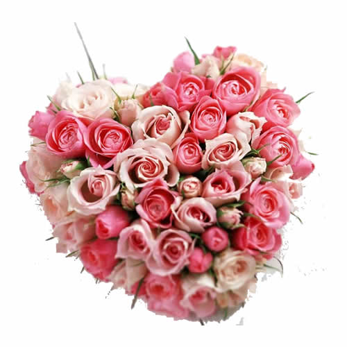 Hearty Roses Love Bunch