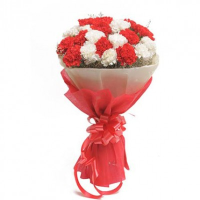 Red & White Carnation Bunch